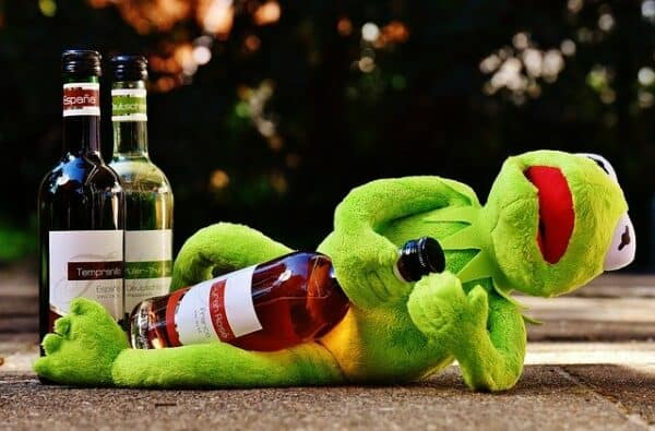 what not to feed a dog - a drunk Kermit the frog lying on his side holding a bottle of red wine.