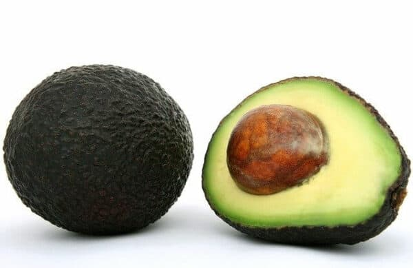 what not to feed your dog - avocado, whole and half