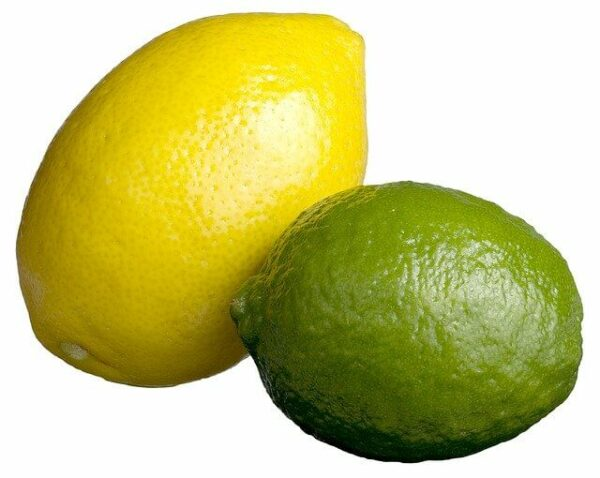 a lemon and lime