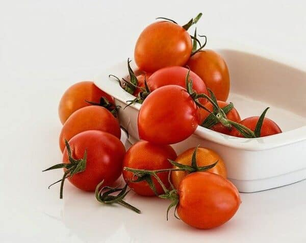 what not to feed a dog - a rectangular bowl of whole tomatoes