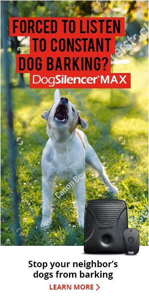 anti barking devices