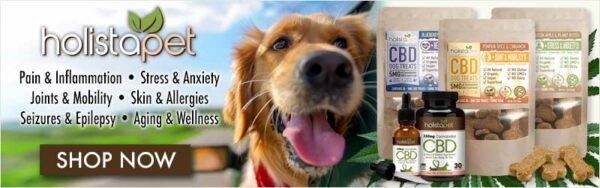 Things that are poisonous to dogs - just a banner of Holistapet with a smiling dog and some CBD products