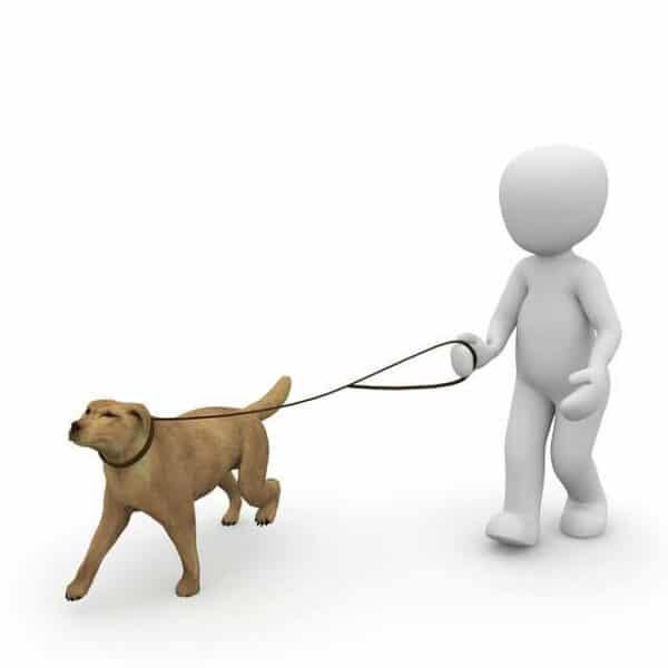 CGI image of a featureless man walking a dog.