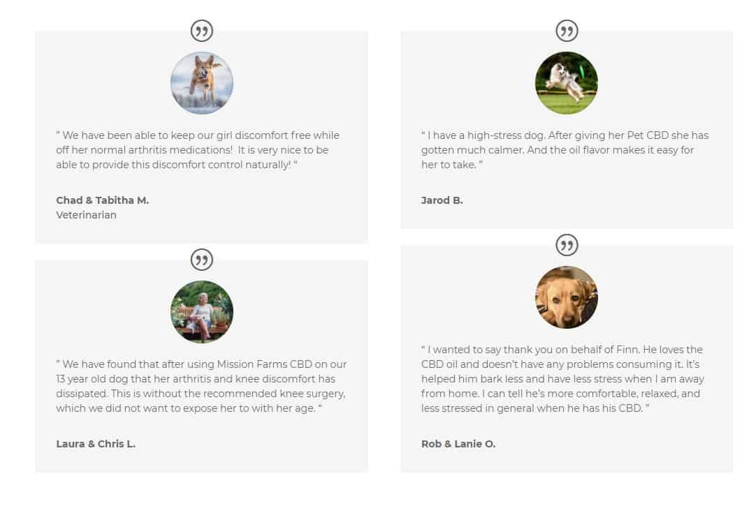 cbd with coconut oil for dogs - a snapshot of verified customer testimonials on the effectiveness of CBD for dogs