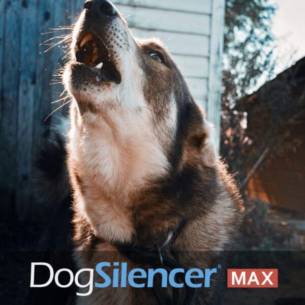 an image of a dog barking. Dog Silencer Max banner