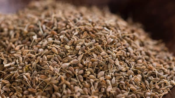 Anise for dogs - a pile of anise seeds