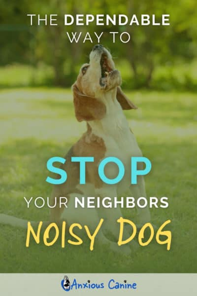 Pinterest Image of a dog in a garden barking loudly