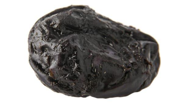 can dogs eat prunes - a single prune